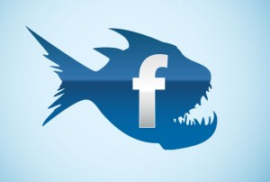 FB-mania